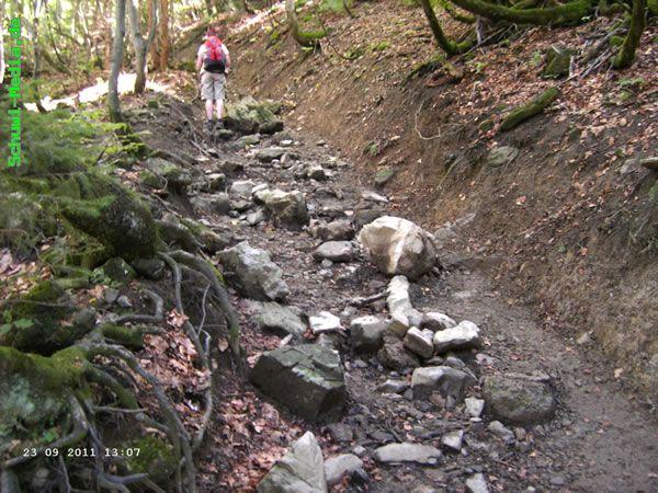 http://bergwandern.schuwi-media.de/galerie/cache/vs_Petersalpe_petersalpe11.jpg