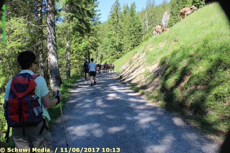 http://bergwandern.schuwi-media.de/galerie/cache/vs_Schwarzwasser%20Huette1_swasserhutte_04.jpg